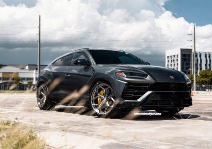 Lamborghini Urus on HRE P111SC