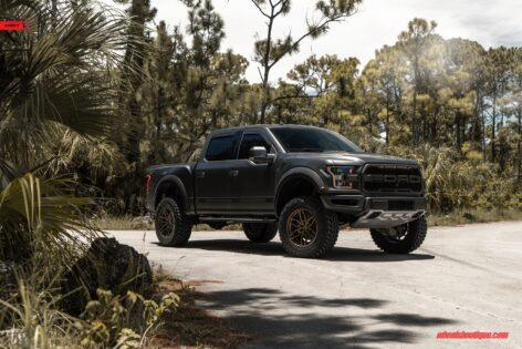 Ford Raptor on ANRKY AN36